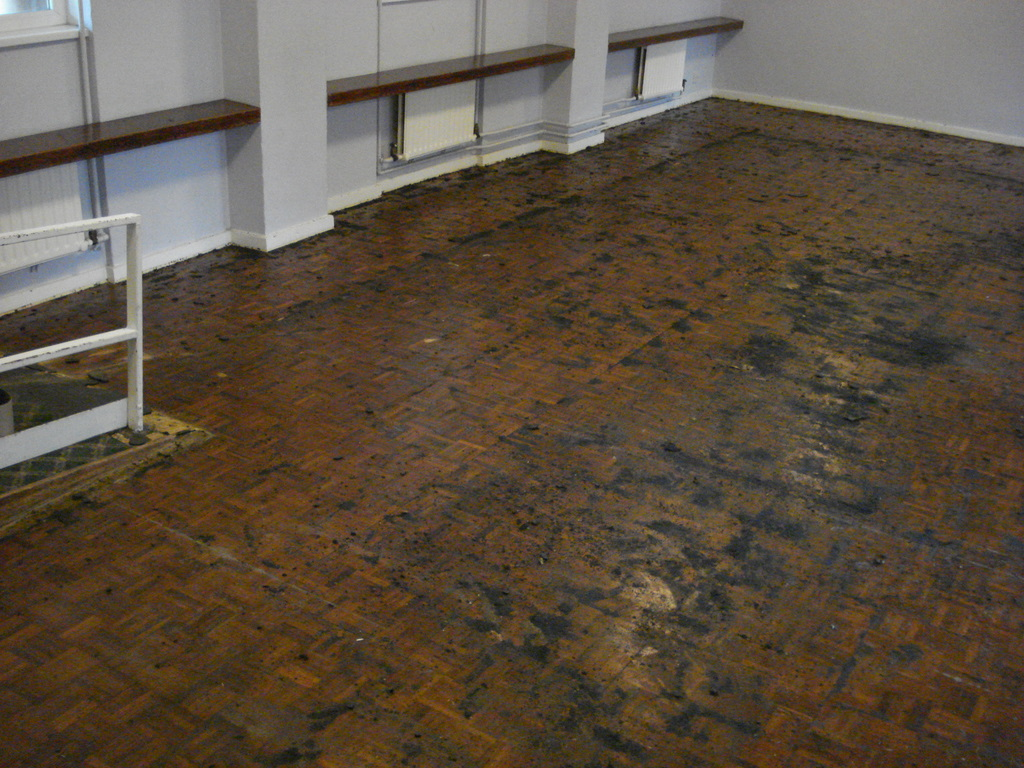 Commercial hardwood floor sanders gurus floor for Commercial hardwood flooring